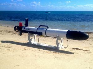 OceanServer Iver2 - Sursa: www.iver-auv.com