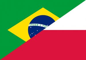 Discutii intre Brazilia si Grupul de la Visegrad ... adica Polonia - Sursa: visegradgroup.eu